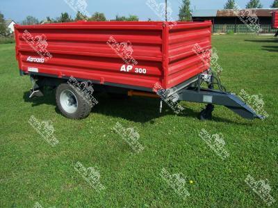 AP 300